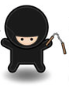 network ninja